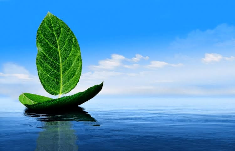 Wondering How to Optimize Power Consumption and Reduce Environmental Pollution?